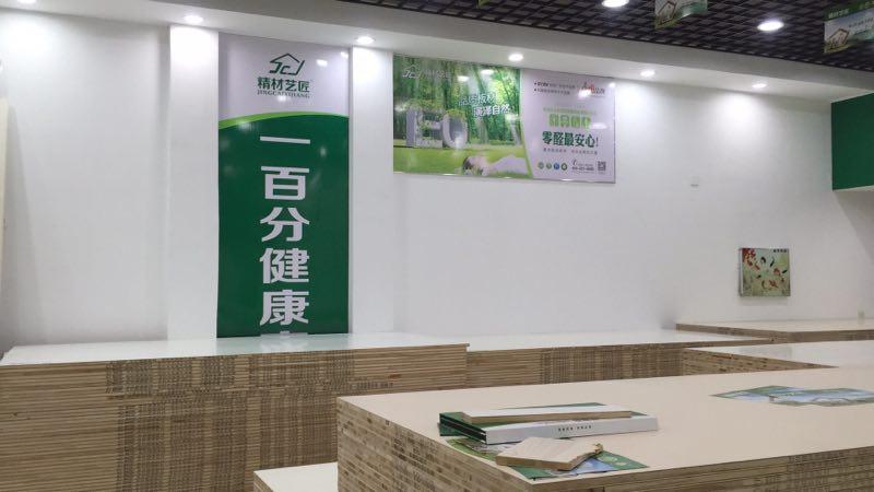 中国板材十大品牌 全屋易装